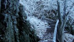 009-radovan-luptak-drevene-schody-na-sitno.jpg